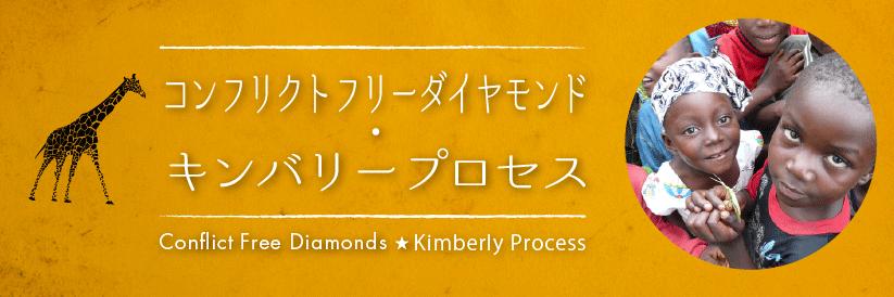 コンフリクトフリーダイヤモンドとキンバリープロセス